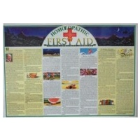 Homeopathic First Aid Wall Chart