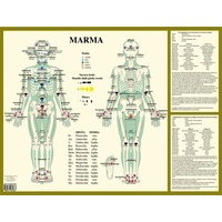 Marma Therapy Wall Chart