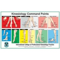 Kinesiology Command Point