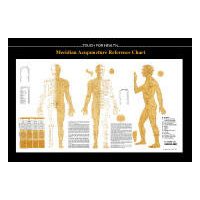 TFH Acupuncture Chart